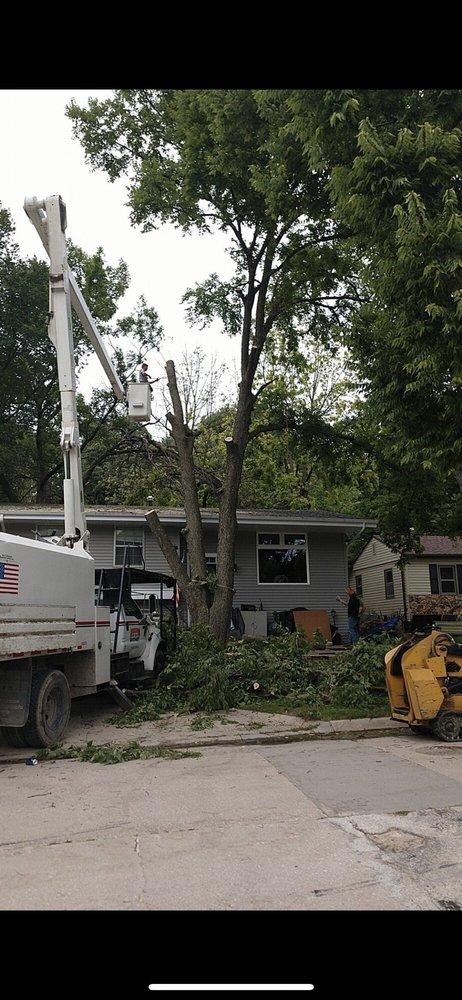 Arbor Pro Tree Service: 220 E Lally St, Des Moines, IA
