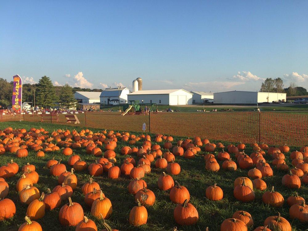 Niederman Family Farm