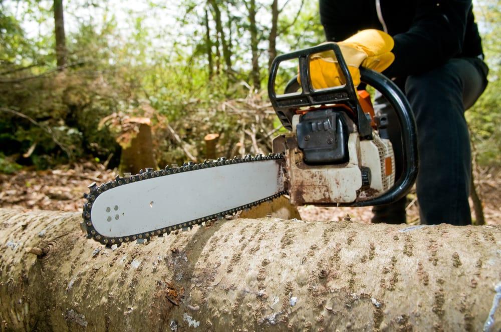 Tree Specialists: 415 Country Estates Dr, Houma, LA
