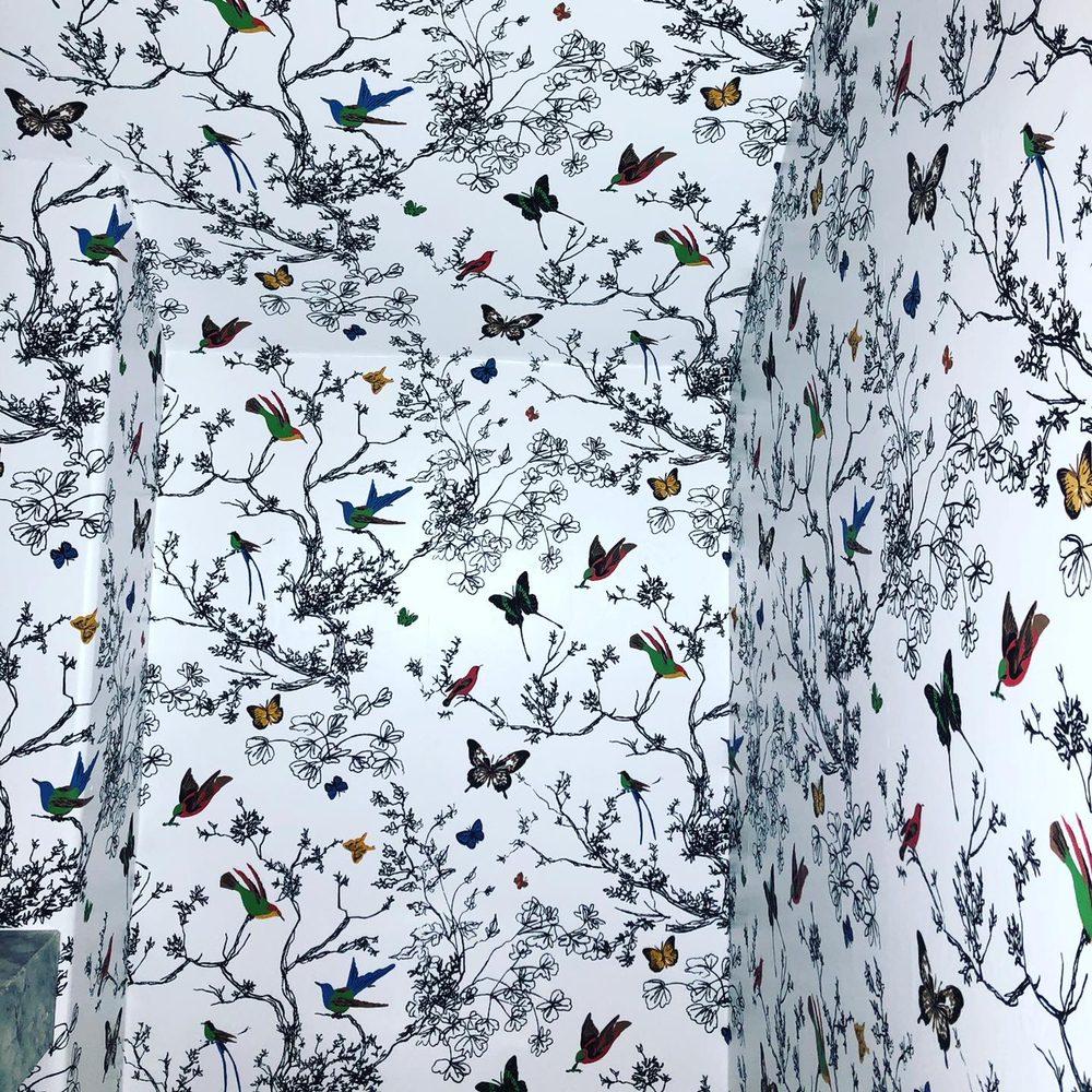 Wallpaper by Sheree: Seminole, FL