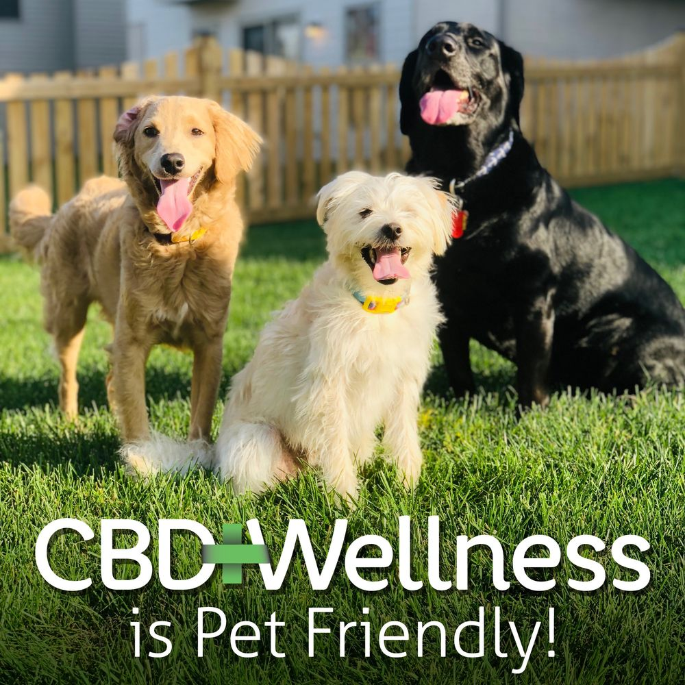 CBD Wellness: 3230 Old Pickett Rd, Fairfax, VA