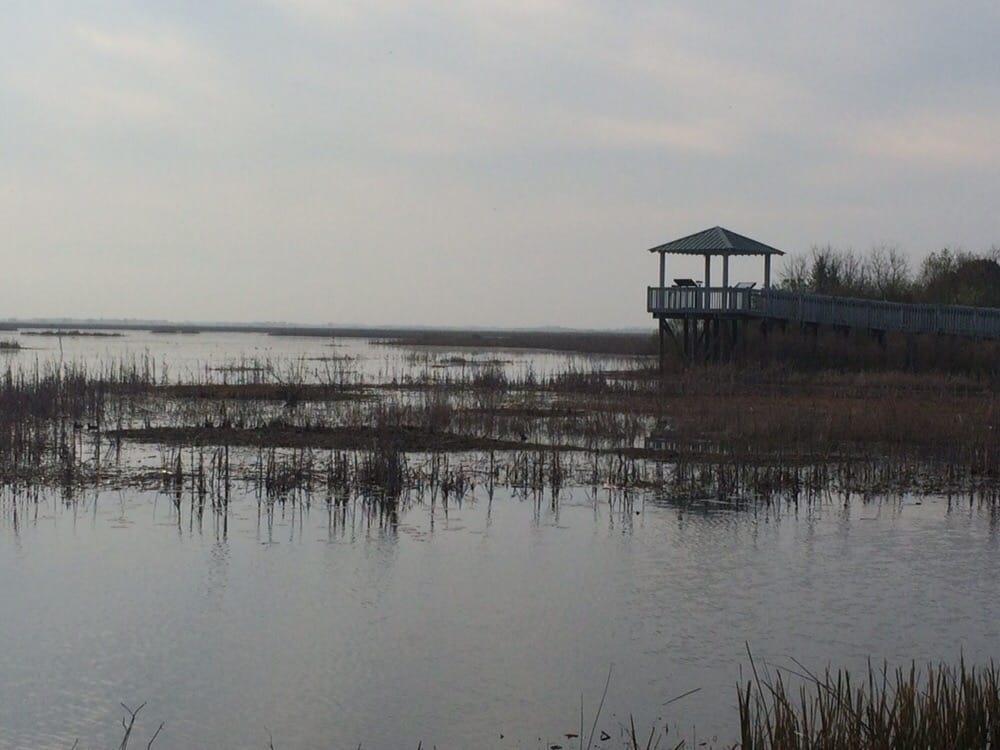 Lacassine National Wildlife Refuge: 209 Nature Rd, Lake Arthur, LA