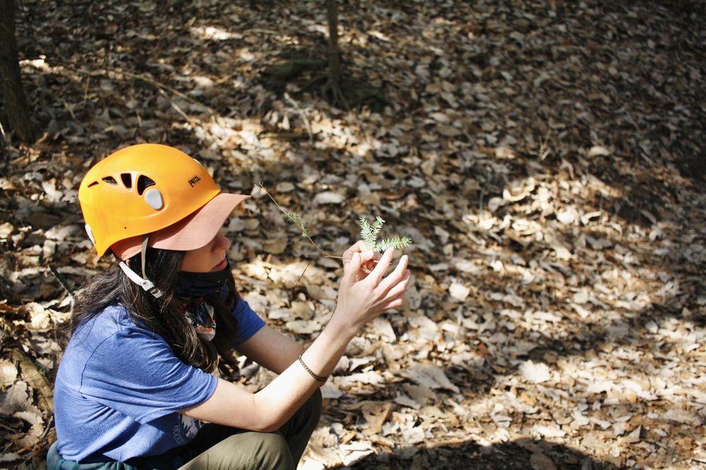 High Rock Adventures/Hocking Hills Ecotours: 10108 Opossum Hollow Rd, Rockbridge, OH