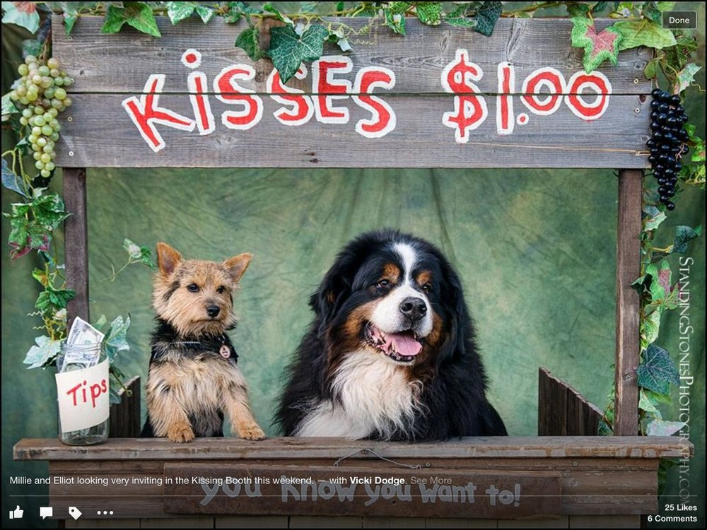 Cobber's Pet Pantry: 1415 Blake St, Enumclaw, WA