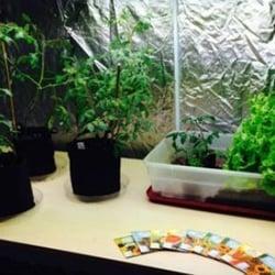 Photo Of Ok Lets Grow Rhode Island Johnston Ri United States