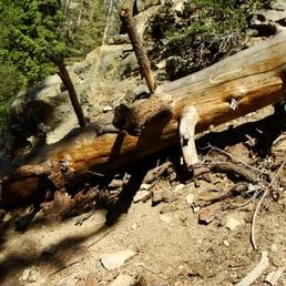Buckhorn Campground 65 Photos Amp 45 Reviews Campgrounds