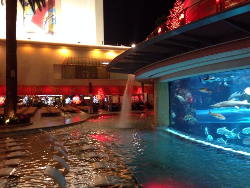 Golden nugget pool 89 photos swimming pools downtown - Public swimming pools north las vegas ...