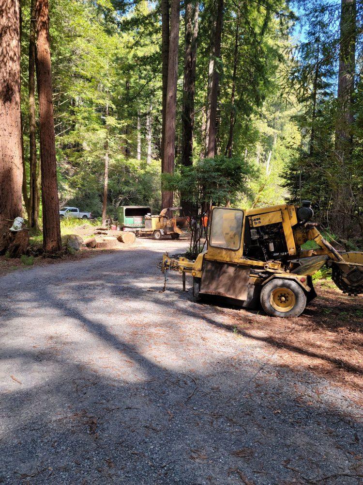 Brown's Logging & Tree Service: Cazadero, CA
