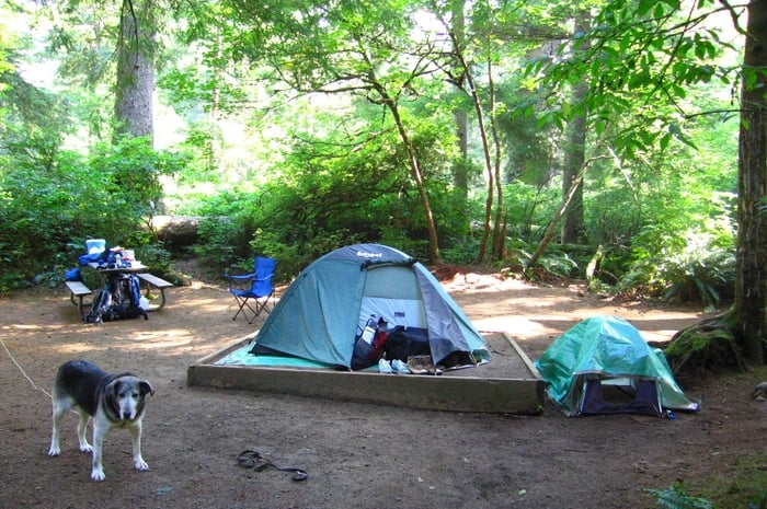 Photo of Oswald West State Park - Manzanita OR United States. Emma preferred & Emma preferred the human tent to her doggie tent. - Yelp