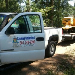 Stumps Unlimited Tree Removal Tree Services Magnolia Ms
