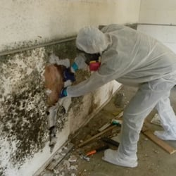 Best Of Basement Waterproofing Baltimore Md