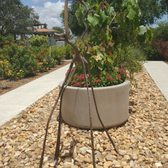 Photo Of South Texas Botanical Gardens And Nature Center   Corpus Christi,  TX, United