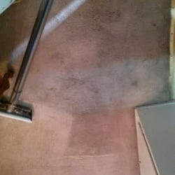 carpet cleaning redwood city - Home The