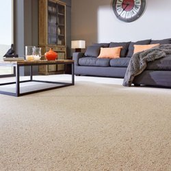 Spotout Cleaning Services 12 Photos Carpet Cleaning 101 Mac
