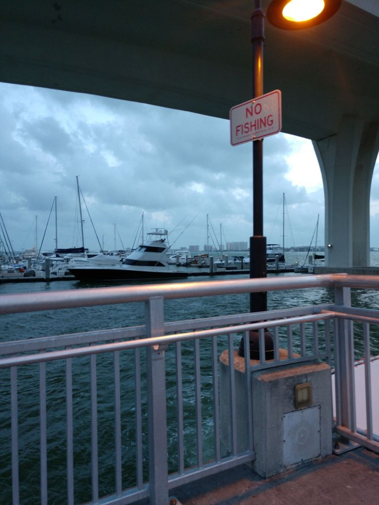 Clearwater Harbor Marina: 210 Drew St, Clearwater, FL