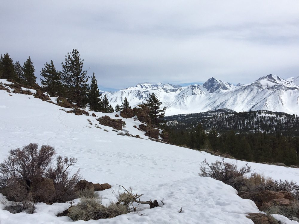 DJ's Snowmobile Adventures: 29500 US Hwy 395, Mammoth Lakes, CA