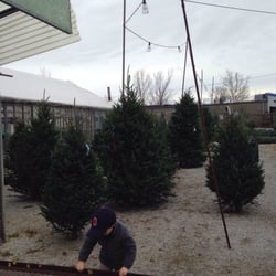 Photo Of Highland Garden Center   Highland Heights, KY, United States.  Christmas Trees