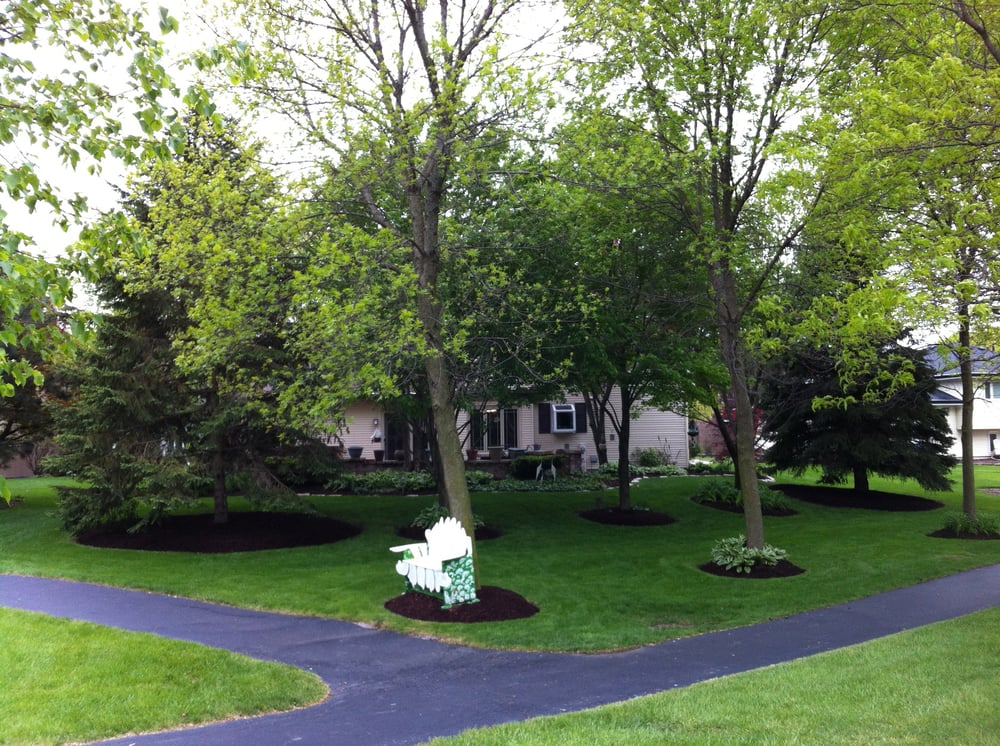 1st Impressions Services Landscaping 229 Maple Ave