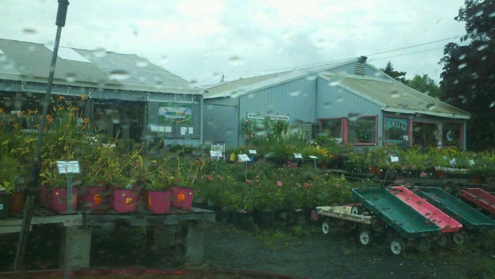 Nurseries & Gardening