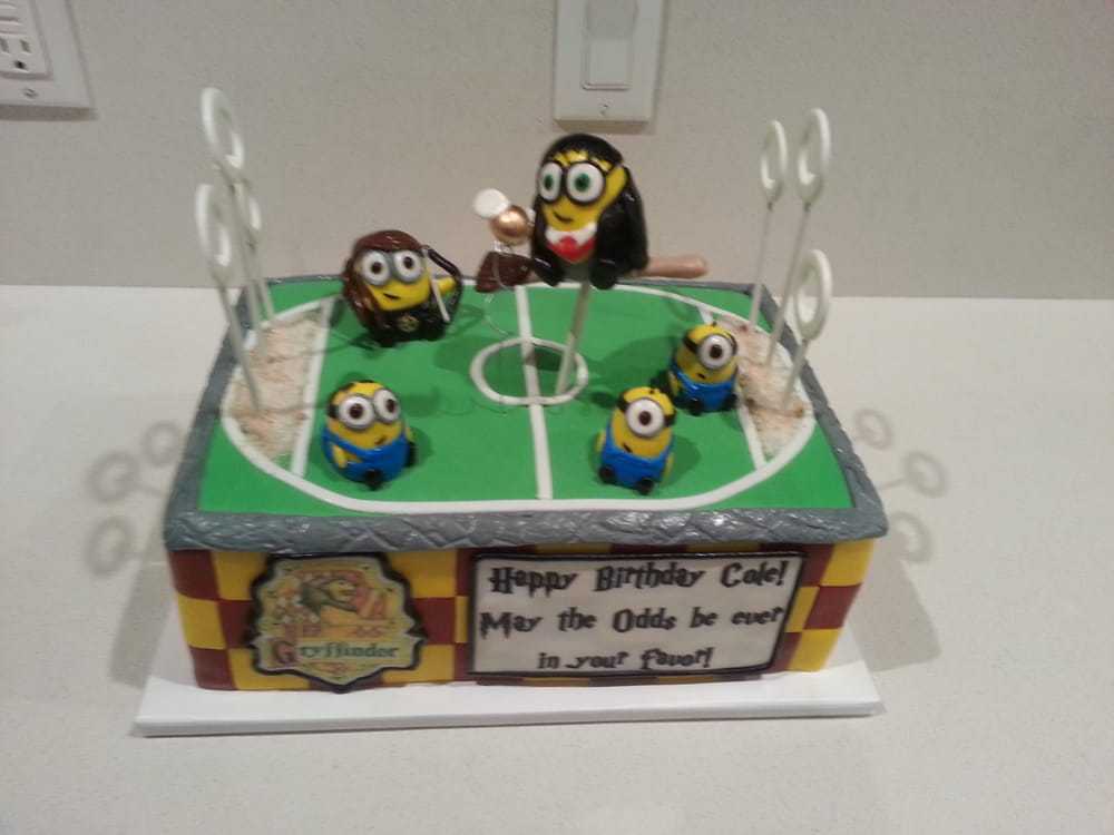 Minion Themed Harry Potter Quidditch With Katniss As His