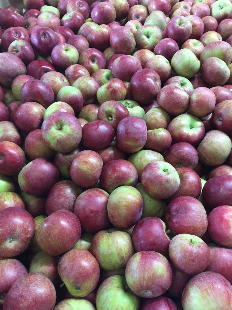 Bushel and A Peck Apple Orchard: 18444 County Hwy Oo, Chippewa Falls, WI