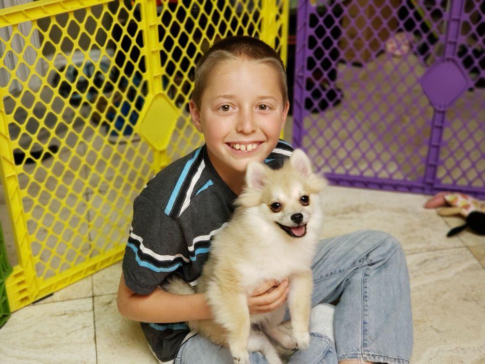 OC Pet Nurse