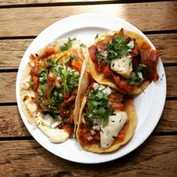 Taquería El Califa - 92 Photos   60 Reviews - Tacos - Altata 22 ... 52cd8f4299cc8