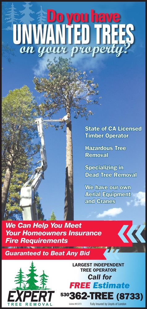 Expert Tree Removal: Grass Valley, CA