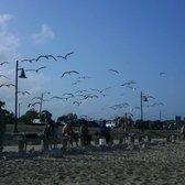 Sylvan Beach - 102 Photos & 33 Reviews - Beaches - 400 N ...
