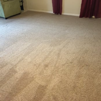 photo of deep steam carpet cleaning tampa fl united states brand new