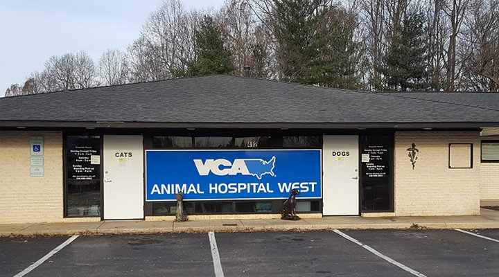 VCA Animal Hospital West - 11 Reviews - Veterinarians - 412
