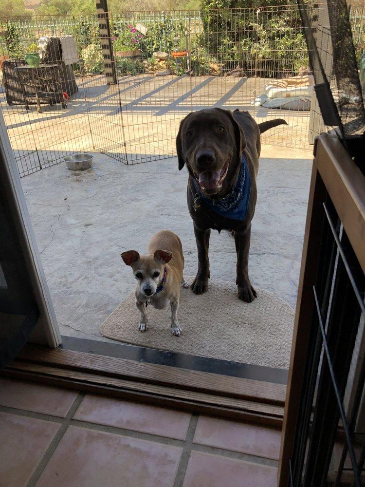 Keehn On Dogs: Bonsall, CA