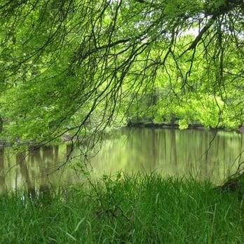 Great Piece Meadows Preserve Hiking Fairfield Nj