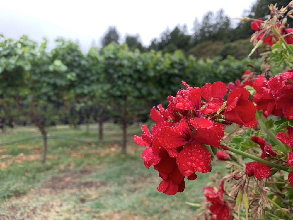 Soquel Vineyards