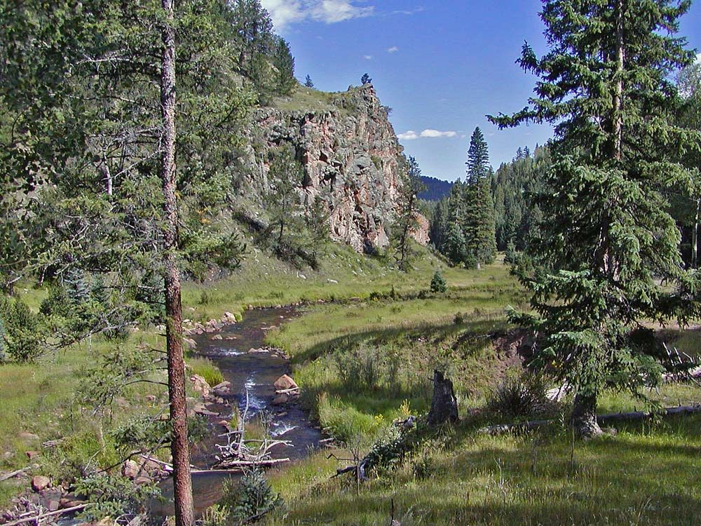 Spring Creek Realty: Florissant, CO