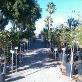 Photo Of Yuma Nursery Supply Az United States