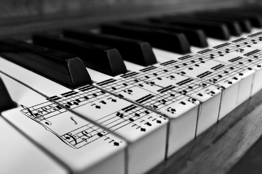 Czyk-Piano Service: 3025 Quail Springs Rd, Corpus Christi, TX