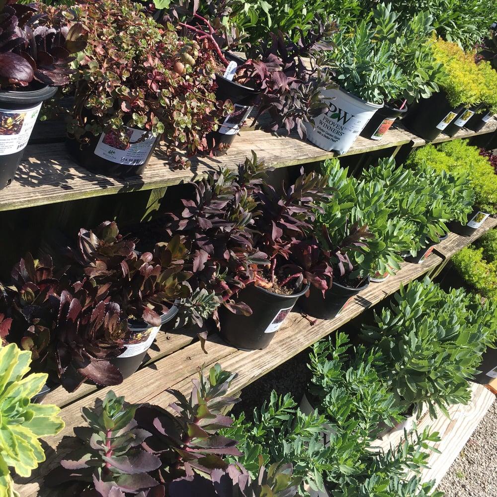 White oak garden center 26 photos garden centres for White oak garden center