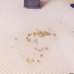 Photo Of Etreme Carpet Cleaning Santa Clarita Ca United States Before