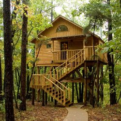 treehouse cottages 46 photos 18 reviews vacation rentals 165 rh yelp com Tree Cabins Eureka Springs AR Eureka Springs Tree in the Shoes