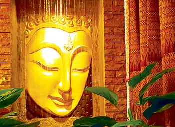 Nisa thai massage flesh light