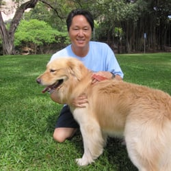 Dog Training Honolulu - 17 Reviews - Pet Training - 3359A