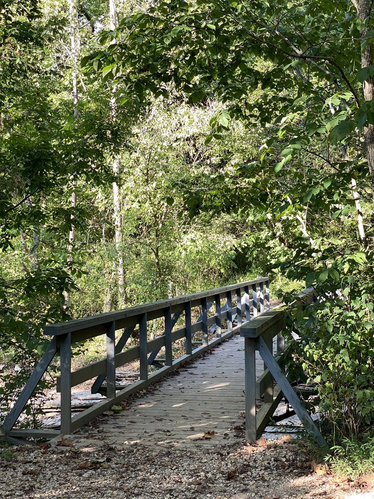 Tanyard Creek Nature Trail: Bella Vista, AR