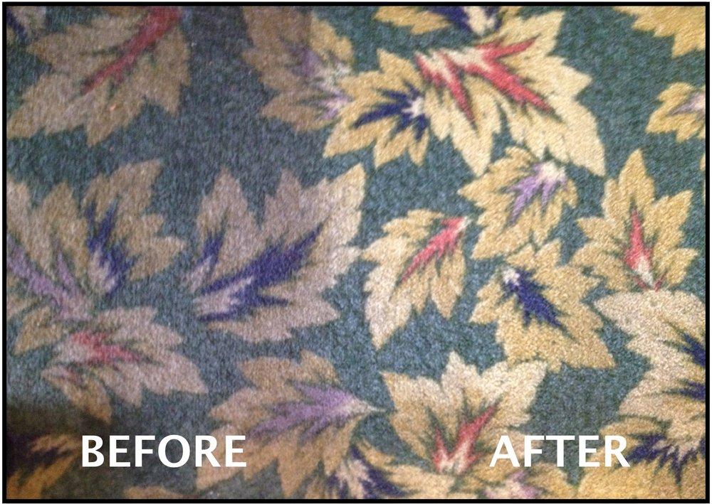 Carpet Doctor Plus: 291 Chestnut St, Oneonta, NY