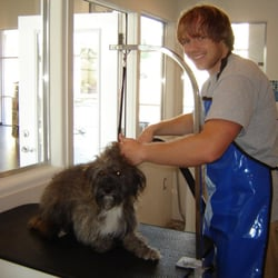 Dog Grooming College Park Fl