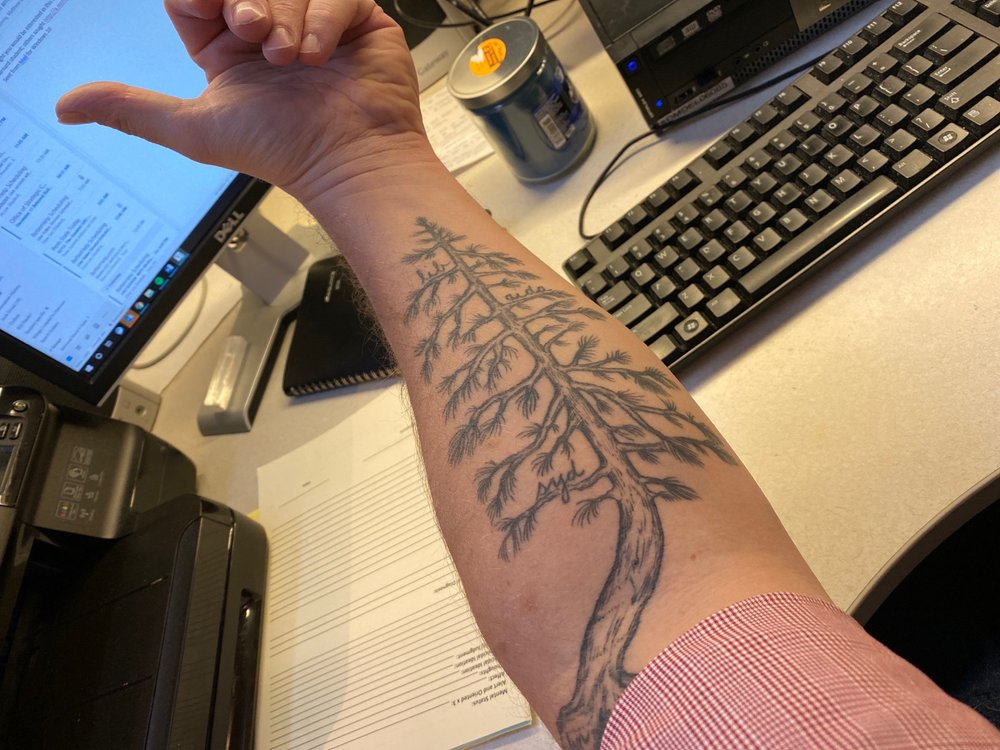 Steadfast Tattoo Parlour: 8320 Peach St, Erie, PA