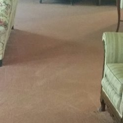 Big Dog Carpet Cleaning 10 Reviews Carpet Cleaning 4354 Town