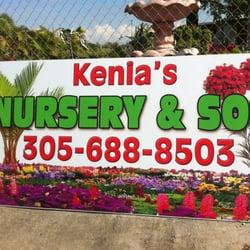 Photo Of Kenia S Nursery Sod Opa Locka Fl