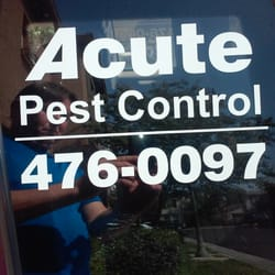 Acute Pest Control  Ongediertebestrijding  Fresno, Ca. How To Get Usaa Auto Insurance. Healthy Quick Breakfast Meals. Storage Units Madison Al Dog Food Free Sample. Austin Alarm Companies Chapter 6 Great Gatsby. Manage All Social Media In One Place. Pool Service Flower Mound Tx. Professional Malpractice Attorney. California Window Replacement