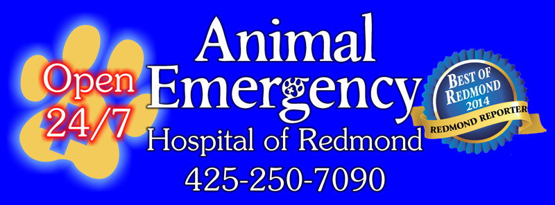 Animal Emergency Hospital of Redmond | 16421 Cleveland St, Redmond, WA, 98052 | +1 (425) 250-7090